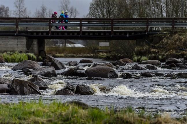 Många vattendrag har getts understöd för restaurering. Det gäller både muddring, strandskötsel och förebyggande projekt mot översvämning.
