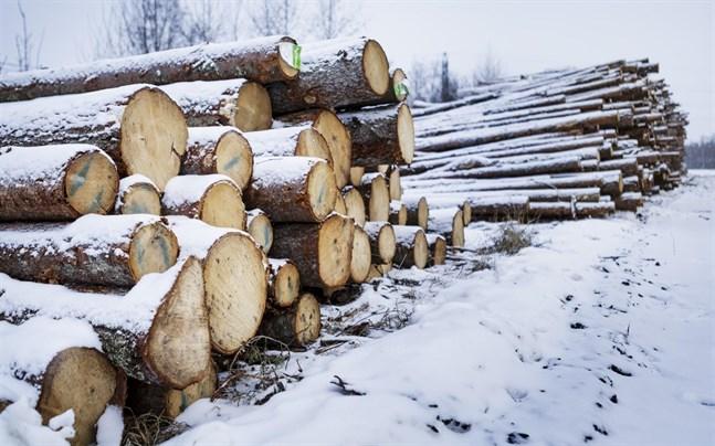 Det kan bli strejk inom skogsindustrin igen.
