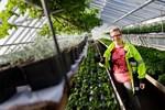 Leila Roininen har planerat ändringarna i Tiklasparken. Hon är hortonom på grönområdesenheten i Vasa stad.