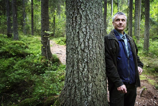 Mårten Lövdahl bedömer att EU:s nya krav är genomförbart och att finländsk skog inte tappar i värde.