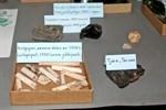 Bland annat kritpipor påträffades i samband med grävningar på gårdsplanerna vid Lebellska köpmansgården och Felénska huset.