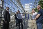 Juni. Nederländernas ambassadör Henk Swarttouw besökte sina landsmän i Närpes och tittade förbi i Martin Siggs växthus. På bilden också Juan Deelen, Rob Westdijk, Carola Sigg och Hans-Erik Lindqvist.
