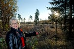 Oktober. Stadsdirektör Ritta El-Nemr visade området där ett solkraftverk planeras i Kristinestad.