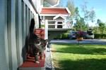 Augusti. Katten Morris och hans hus var ett omtyckt inslag på SÖ:s webb.