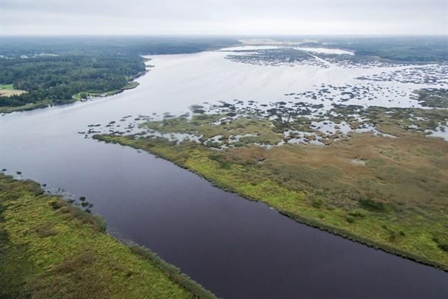 I nedre loppet av Kyro älv var vattenföringen i slutet av maj cirka 4 kubikmeter per sekund.