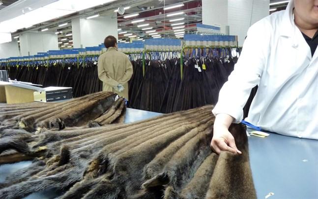 Av de bästa bruna minkskinnen, knappt en  miljon skinn, såldes endast 10 procent. Kopenhagen Fur vägrade nämligen backa deras pris från september.