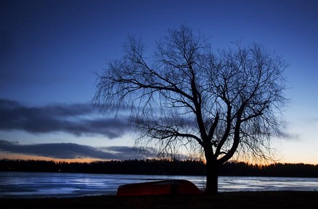 Den 22 december är det vintersolstånd. Efter det blir det ljusare, om än långsamt ljusare.