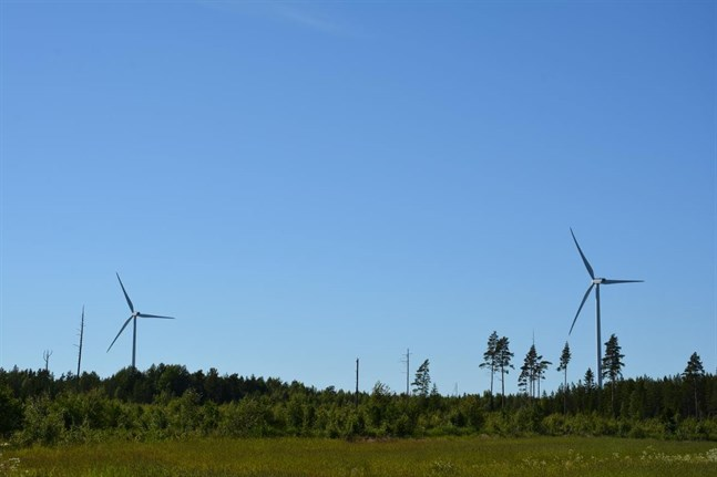 I dag är de två vindkraftverken i Harrström de enda som finns i Korsnäs kommun. Nu är det på nytt aktuellt med vindkraftsparker också i Korsnäs kyrkby och Molpe.