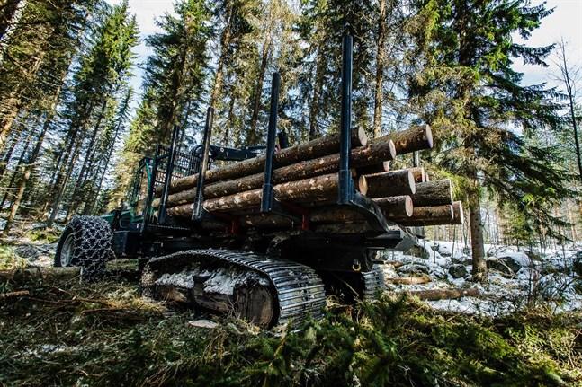 Vi kan överlåta skogsskötseln åt naturen allt mera, men då får vi mycket stora sociala och ekonomiska problem, skriver Anders Norrback.
