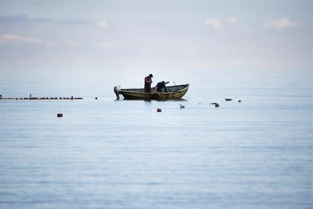 Fiskeri-, jordbruks- och miljöministrarna i de berörda medlemsländerna gick med i mitt upprop för att agera nu, skriver Virginijus Sinkevicius, EU-kommissionär med ansvar för miljö, hav och fiske. I måndags ordnades en Östersjökonferens på hög nivå på hans initiativ.