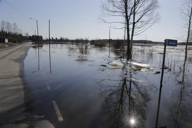 Toby å är översvämningskänslig. Bilden är tagen våren 2018.