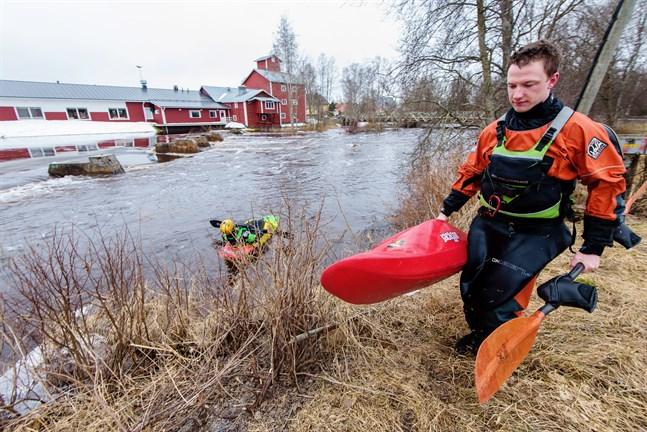 För freestyle paddlarna Kimmo Ylikarjula och Pekka Lokasaari är vårflödet en fest. Kronoby å nedanför kyrkan. 20.4.2018.