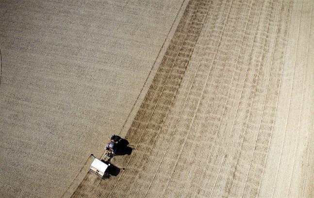 En odlingssäsong med nya utmaningar har kommit i gång.