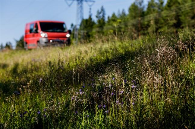 Vägkanterna röjs två gånger på sommaren längs de mest livligt trafikerade vägarna. Den första slåttern görs enligt nuvarande anvisningar med smal omfattning. Det hjälper arterna att förnyas.
