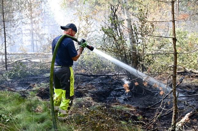 Det är torrt i naturen nu och skogsbrandsvarning råder i alla de österbottniska landskapen. Bild från en tidigare skogsbrand.