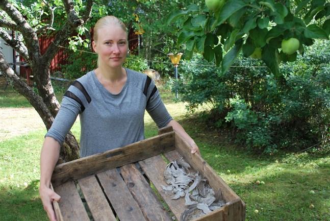 Emelie Lytz visar resterna av ett stort getingbo. Det har funnits fyra extra besvärliga bon på gården i sommar.