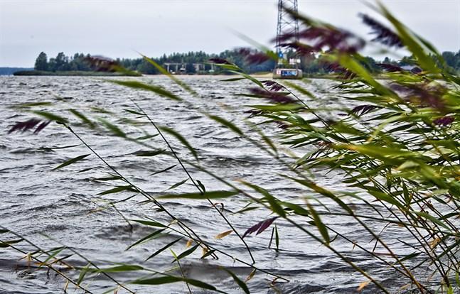 Hård vind och högt vattenstånd väntas i Österbotten de närmaste dagarna.