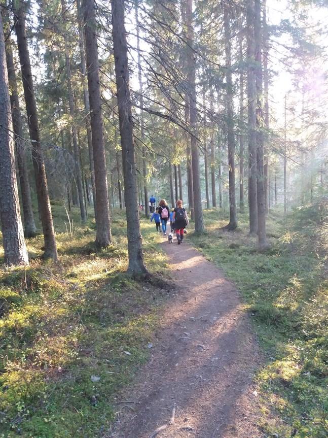 Kortjärvi naturstig lockar 4 000 besökare per år. Nu är byborna oroliga för hur det ska bli om stamvägen dras i närheten och så att den korsar stigen på två ställen.
