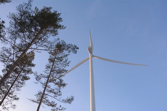Åtta vindkraftverk planeras på Poikel vindkraftsområde i Korsnäs. Hela området är tusen hektar stort.