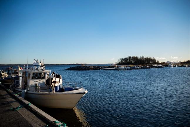 Fiskebåtarna blir allt färre vid Ådön, medan antalet fritidsbåtar ökar.