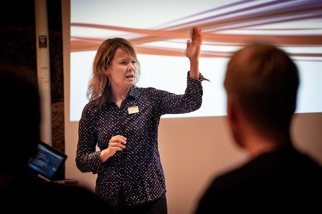 Mari K. Niemi är direktör för Innolab på Vasa universitet.