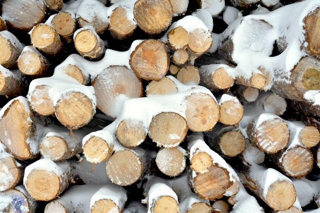 Det avverkas mindre än skogens tillväxt. Men den nu föreslagna gränsen kommer emot redan om årliga avverkningarna ökar knappt åtta procent, vilket motsvarar en modern pappersmassafabrik.