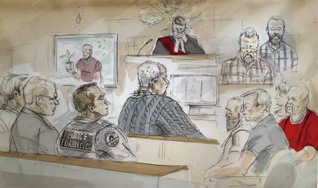 En illustration från rättegången mot den kanadensiske trädgårdsmästaren Bruce McArthur.