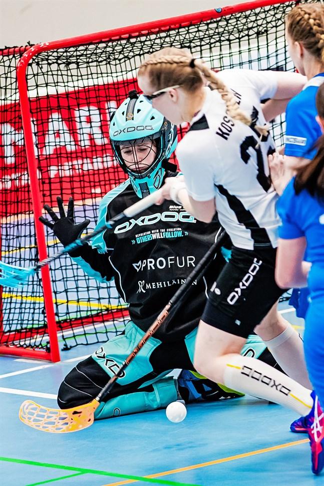 Hannah Pekkarinen vaktade Blue Fox-målet i helgens båda matcher.