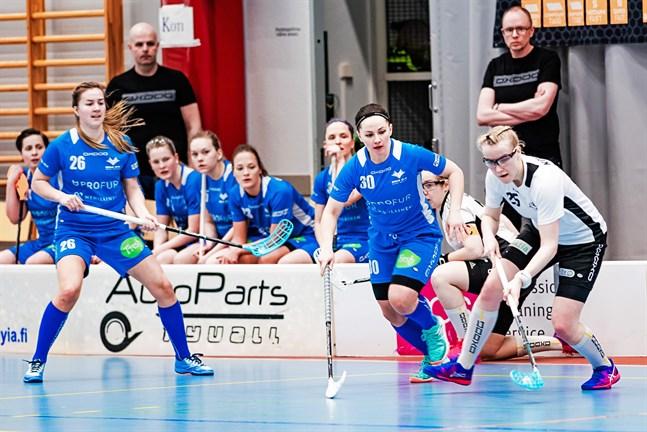 Suvi Hautala (30) återvänder till Blue Fox. Johanna Strömsholm (26) hör också till de som är högaktuella. Andreas Nyby (t.v av de två tränarna) leder laget i division ett.