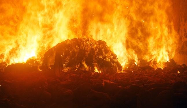 Särskilt de träprodukter som bränns i fuktigt tillstånd orsakar stora koldioxidutsläpp, skriver Daniel Paro.
