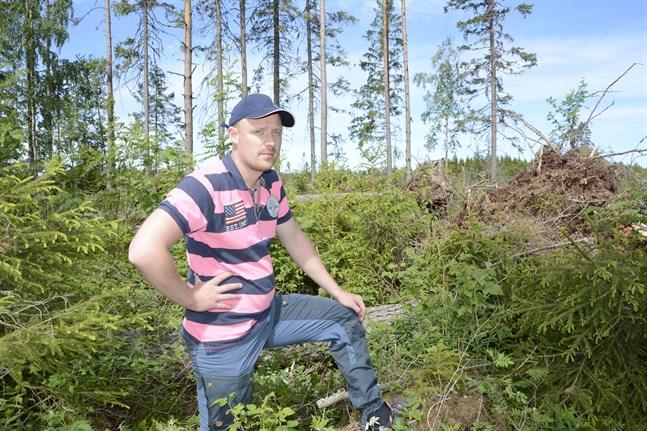 Många enskilda skogsägare kan komma att drabbas av skadeinsekter, men något större omfattande angrepp på skogarna i Närpes är inte aktuellt. Vi har jobbat bra med att få undan vindfällena, säger Johan Svedström.