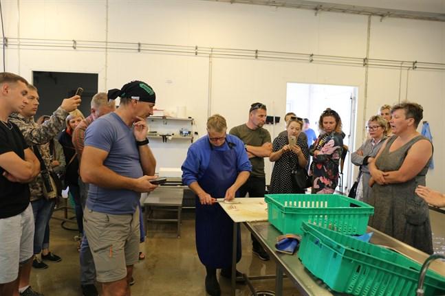 Fiskkunniga från Polen och Lettland besöker Österbotten för att ta del av fiskebranschen och få inspiration till hållbar och smart fiskeförädling. Här visar Alf-Erik Björnström hur han filéar fisken.