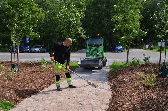 Juha Jänisoja jämnar ut gångarna i Sandviksparken.