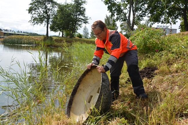 Anne Haavisto hittade Badhusparkens blomkrukor i Stadsfjärden då hon kom på jobb på måndagsmorgonen.