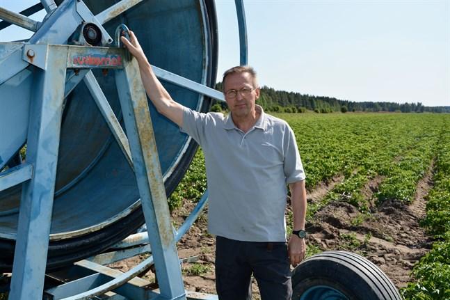 Just nu är det mycket jobb med bevattningen, uppger Jan Porander. Fukt binder värme, och hindrar potatisen från att frysa.