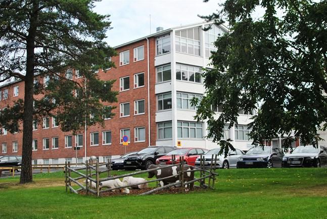 Centrums rådgivning har flyttat till Dammbrunnsvägen 4. Nu är förslaget att också Sundoms småbarnsfamiljer ska söka sig dit.