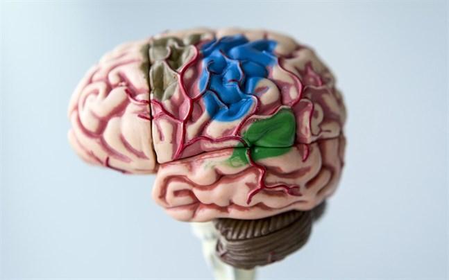 Återkommande tupplurar kan vara ett tidigt tecken på Alzheimers sjukdom, som är en demenssjukdom. Orsaken, tror forskare, är att olika områden i hjärnan som främjar vakenhet dagtid angrips av proteinet tau och dör.