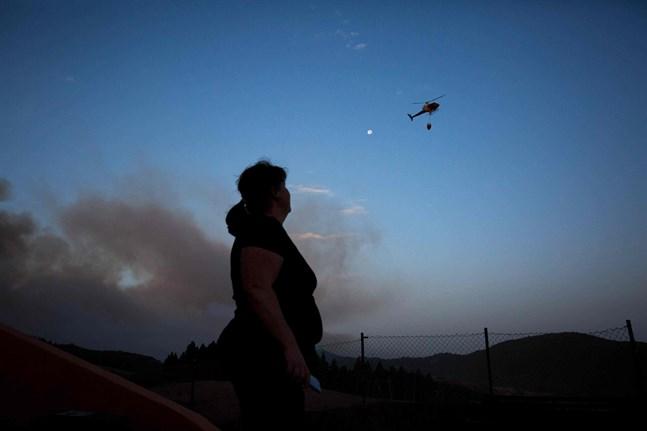 Skogsbränder härjar på Gran Canaria. Flera helikoptrar används i släckningsarbetet.