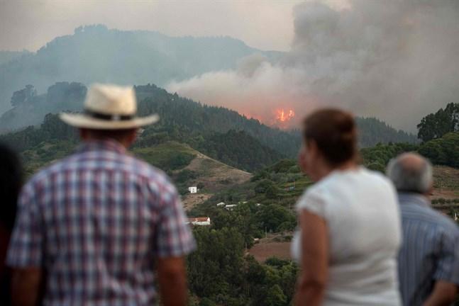 Omkring 700 brandmän kämpar mot lågorna på Gran Canaria.