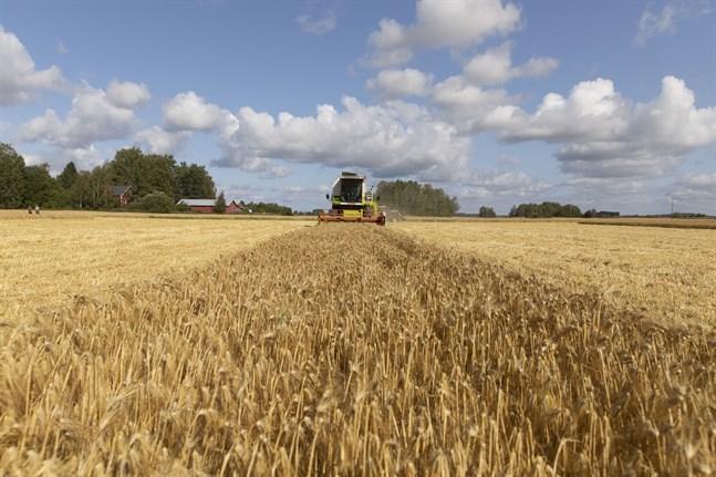 Årets nationella jordbruksstöd är nu fastställda.