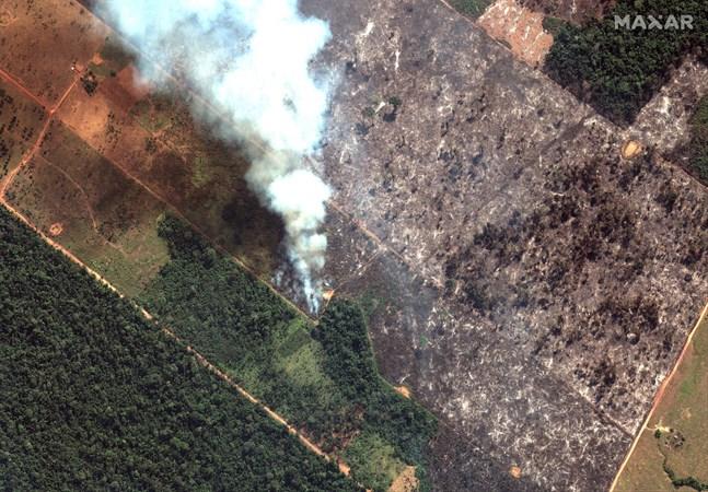 Satellitbild som visar brinnande regnskog i den brasilianska delstaten Rondônia.