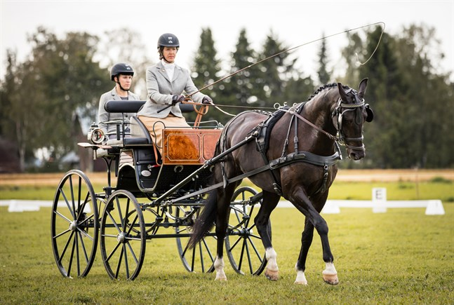 Kusken Tove Söderholm och groomen Anna Kalliosaari med hästen Ballantine.