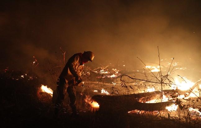 En brandman i en eldhärjad skog i Bolivia.