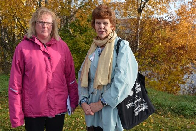 Ulrica Enqvist och Eivor Eklund-Back ställer, i likhet med många andra, frivilligt upp för luciaarrangemangen i Närpes. De åtar sig uppgiften som luciaarrangörer med omsorg och glädje men blir ledsna när byråkratin åsamkar deras egna huvudföreningar problem.