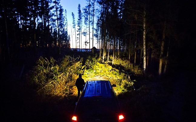 Det är risk för att den hårda vinden gör att träd välter eller går av under natten mellan fredag och lördag.