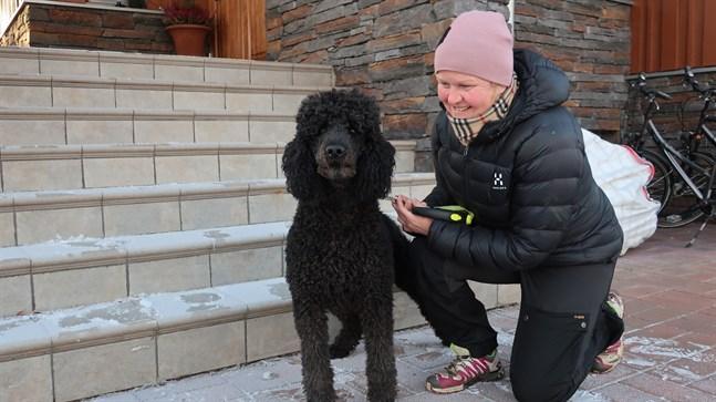 Hunden Baloo och Katri-Helena Hellén såg till att räddningsverket kom till platsen.