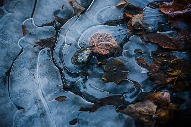 Det är kallt i Österbotten just nu men redan under helgen kan temperaturen stiga något.