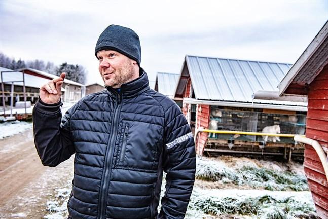 Tobias Andersson är pälsfarmare på heltid sedan 2009. Han säger att han alltid vetat att han vill vara företagare och att han gillar att jobba med djur.