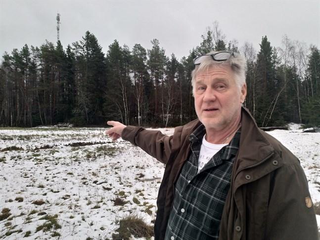 Staffan Rönnbacka såg två rådjur i skogsbrynet i torsdags morse.  Han gläds åt att de är tillbaka vid matningsplatsen.