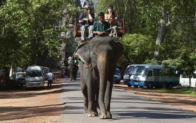 Turister rider på en elefant vid ruinstaden Angkor i Siem Reap i norra Kambodja.